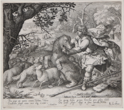 David kills the lion