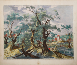 Wooded landscape with the...