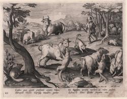 L'attacco delle volpi